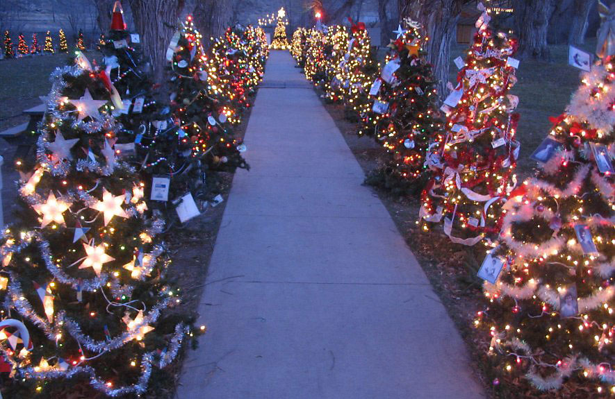 Walkway lighting for Sidewalk christmas lights