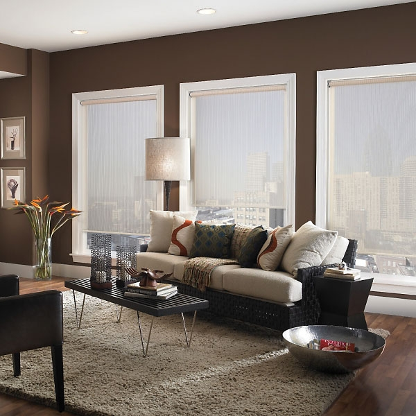 All About Roller Shades