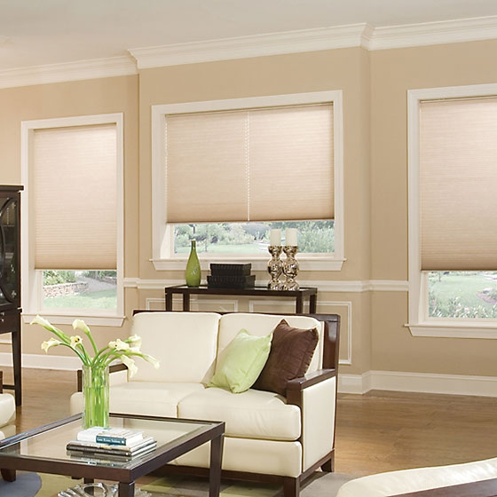 The Rundown on Cellular Shades