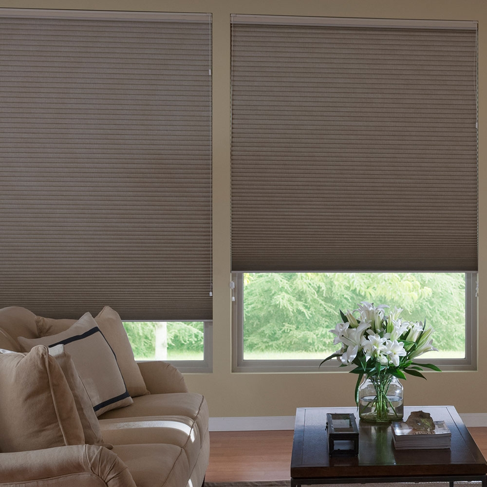 Install blackout and noise dampening window treatments