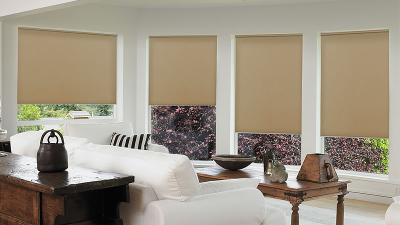 The Rundown on Roller Shades