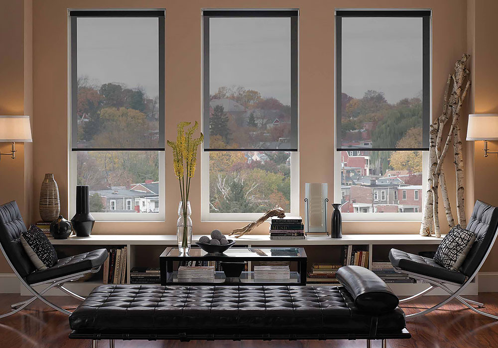 What Can New Window Treatments Do for Your Home?